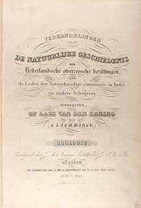 Verhandelingen over de natuurlijke Geschiedenis der Nederlandsche Overzeesche Bezittingen